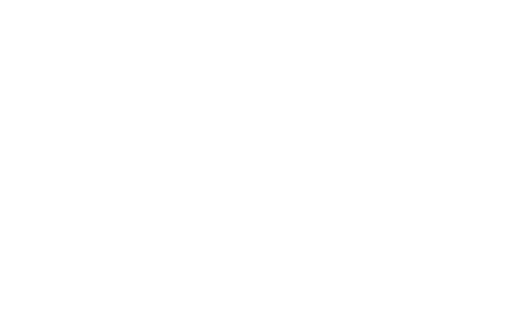 What-So-Not logo